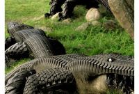 Alligator Tires Yard Perfect Garden Art if You Live Near the Everglades Tire Re
